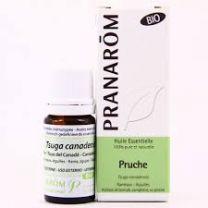 Huile essentielle Pruche PRANAROM Bio (Tsuga canadensis) - 5 ml